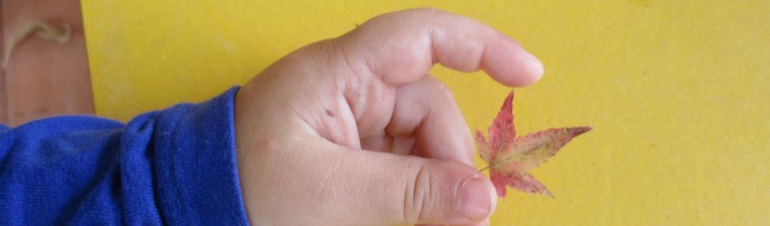 Bambini in natura: il diritto di stare all'aria aperta